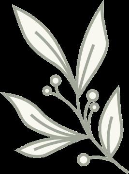 On Good Ground Leaves Illustration Left transparent background