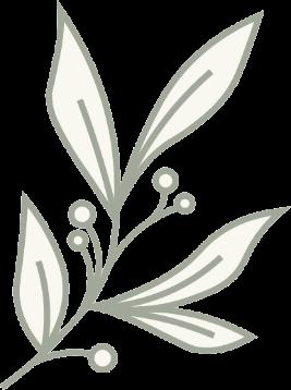 On Good Ground Leaves Illustration Right transparent background